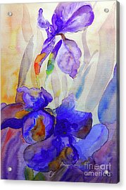 Acrylic Print featuring the painting Iris by Jasna Dragun