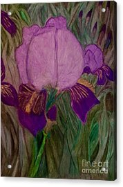 Iris - Magic Man. Acrylic Print