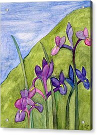 Iris Meadow Acrylic Print by Margie  Byrne