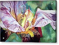 Iris Passion 1993 Acrylic Print