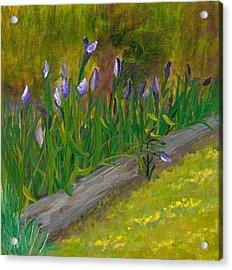 Iris Procession Acrylic Print by Wanda Pepin
