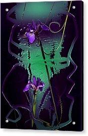 Iris Reflections Acrylic Print by Algis Kemezys