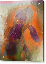 Acrylic Print featuring the digital art Iris Resubmit by Jeff Burgess