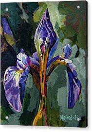 Iris Snow Acrylic Print