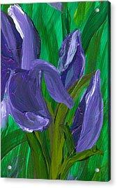 Iris Up Close And Personal Acrylic Print by Wanda Pepin