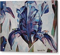 Acrylic Print featuring the painting Iris Winter by Tim  Heimdal