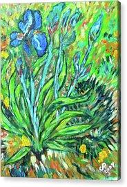 Irises Ala Van Gogh Acrylic Print by Carolyn Donnell