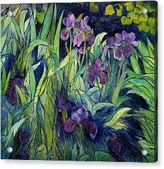 Irises At High Altitude Auribeau France 2004   Acrylic Print by Enver Larney