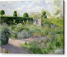 Irises In The Herb Garden Acrylic Print by Timothy Easton