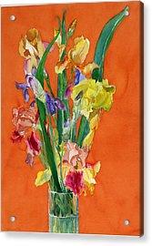 Irises Acrylic Print by Martha Zausmer paul