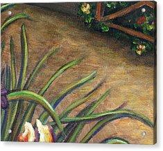 Iris Flower Garden Part B Acrylic Print by Linda Mears