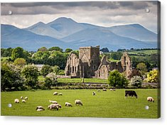 Irish Country Side Acrylic Print by Pierre Leclerc Photography