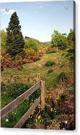 Irish Countryside Acrylic Print by Michael  Cryer