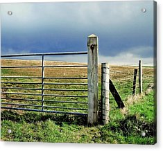 Irish Field Acrylic Print
