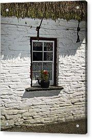 Irish Kettle Of Geraniums County Cork Ireland Acrylic Print by Teresa Mucha