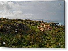 Irish Rustic Acrylic Print by Joe Bonita