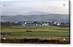Irish Sheep Farm II Acrylic Print by Henri Irizarri