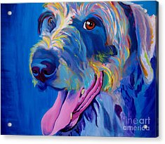 Irish Terrier - Lizzy Acrylic Print