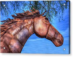 Acrylic Print featuring the photograph Iron Horse by Paul Wear