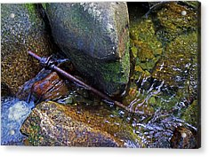 Iron Snake Acrylic Print by Jerry LoFaro