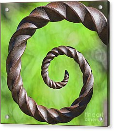 Iron Spiral Acrylic Print by Stephanie Hayes