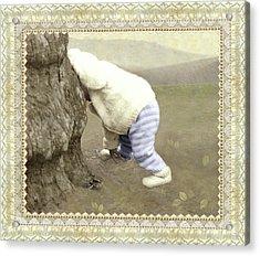 Is Bunny Behind Tree? Acrylic Print