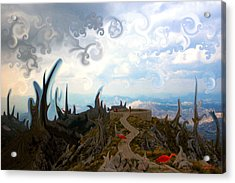 Is It  Acrylic Print by Marko Mitic