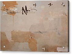 Is It This Acrylic Print by Andrew Crane