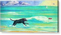 Islamorada Dog Acrylic Print