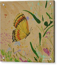 Island Butterfly Series 1 Of 6 Acrylic Print by Gail Kent