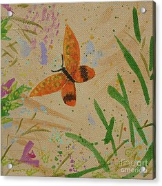 Island Butterfly Series 3 Of 6 Acrylic Print by Gail Kent