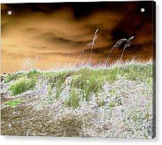 Island Dune Acrylic Print by Peter  McIntosh