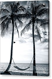 Island Nap Time At San Andres Island Acrylic Print by John Rizzuto