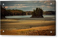 Island On The Lake Acrylic Print