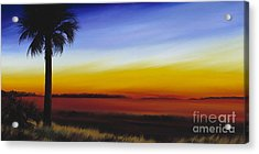 Island River Palmetto Acrylic Print by James Christopher Hill
