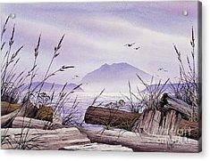 Island Splendor Acrylic Print by James Williamson