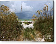 Island Trail Out To The Beach Acrylic Print