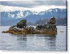 Island With Gulls Acrylic Print