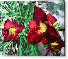 Wildflowers 06 ...52.16 Nature Flowers Images Acrylic Print