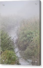 Acrylic Print featuring the photograph It Flows From The Mist by Odd Jeppesen