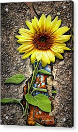 It Grew From Within Acrylic Print