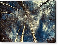 It Is All About Perspective Acrylic Print