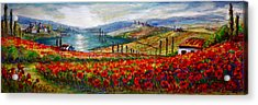 Italy Tuscan Poppies Acrylic Print by Yvonne Ayoub