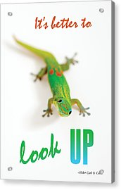Its Better To Look Up Acrylic Print