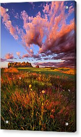 It's Like Going To Heaven With Your Feet Still On The Ground Acrylic Print by Phil Koch