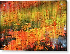 Acrylic Print featuring the photograph It's Nature's Way by Jessica Jenney