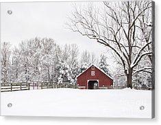 It's Snow Mesmerizing Acrylic Print by Benanne Stiens