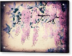 It's Springtime Acrylic Print by Angela Doelling AD DESIGN Photo and PhotoArt