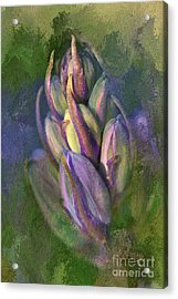 Acrylic Print featuring the digital art Itty Bitty Baby Bluebells by Lois Bryan