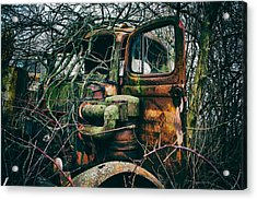 I've Created A Monster  Acrylic Print by Off The Beaten Path Photography - Andrew Alexander